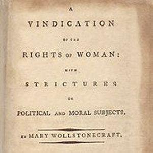 vindication the law gals essay