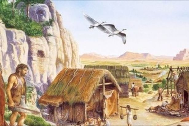 the neolithic revolution an important historical