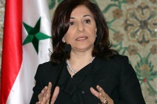 Esad'ın danışmanı: Militanlara silah tedariki için kullanılan Türk gözlem noktaları imha edilebilir