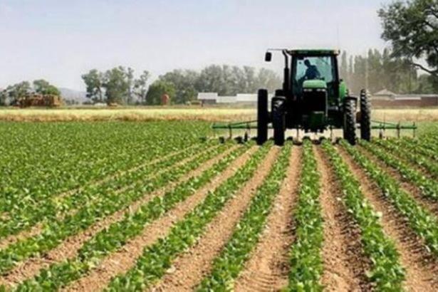 Bakanı eleştiren çiftçiye 5 yıl destek yok!
