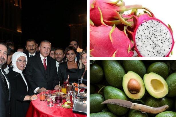 akp erdoğan ejder meyvesi saray