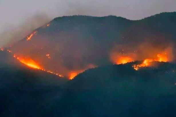 Orman yangınları bu bölgede olunca ne müdahale ediliyor ne kayıt altına alınıyor