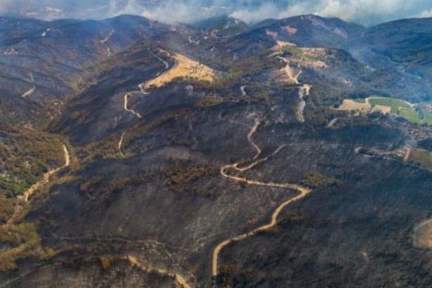 İzmir'deki yangınlarda Alamos Gold parmağı mı? 'Haritada işaretli yerler yandı'