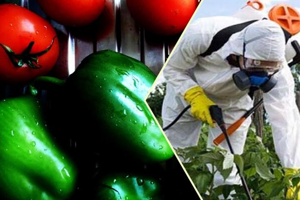 Sebzelerin yüzde 15'inde yasak pestisit çıktı